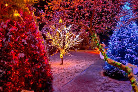 8 Exterior Christmas Lights Installation Mistakes You Can Avoid When You Hire The Pros